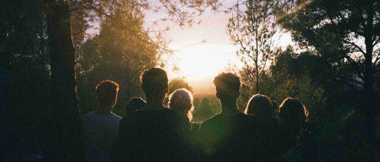 Personen Menschen Wald Bäume Sonne Gemeinsam Gemeinschaft